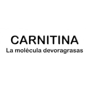 L-CARNITINA5