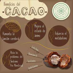 Beneficios de comer chocolate 1