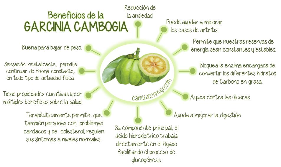 La Garcinia Cambogia sirve para adelgazar4