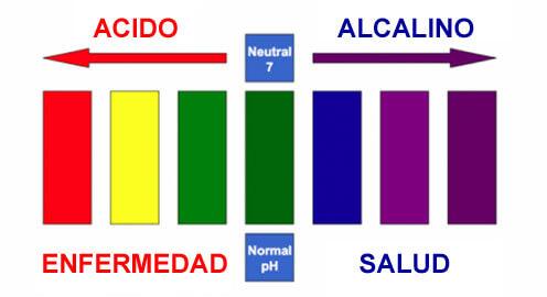 alcalino 2