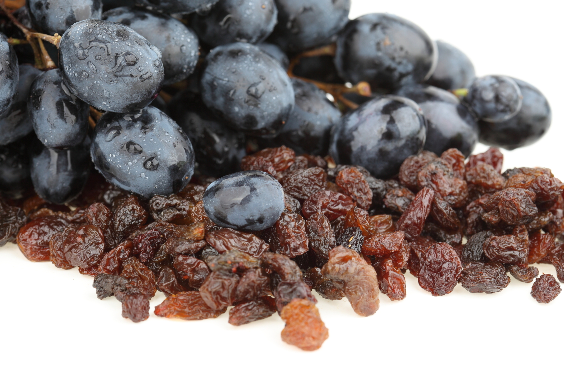 uvas-negras-pasas